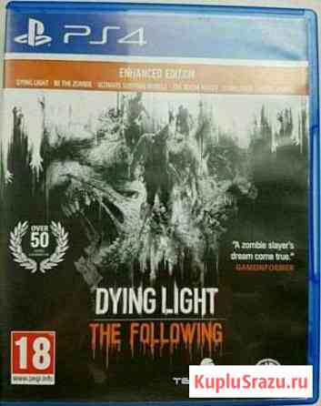 Dying light enchanted edition Барнаул
