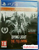 Dying light enchanted edition