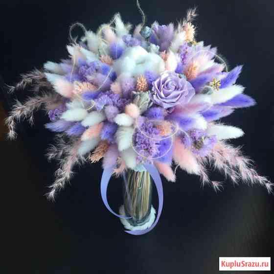 Злак Заячий хвостик. Лагурус сухоцвет, букет невесты, семена Новосибирск