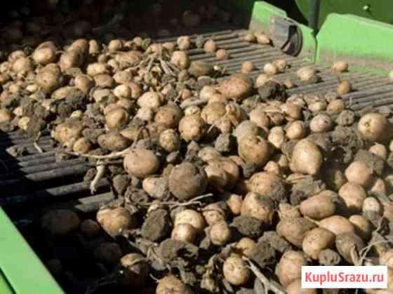 Продам сельхозпредприятие, производственная база, кфх, выращивание кар Кемерово