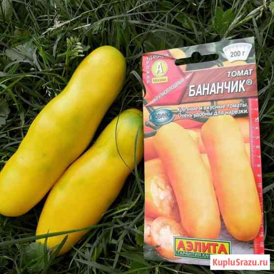 Томат Бананчик. желтый, вкусный.без кислинки. семена Новосибирск