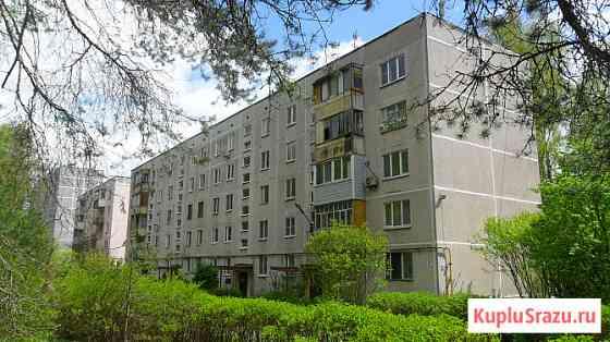 Тихая квартира в сосновом лесу Конаково