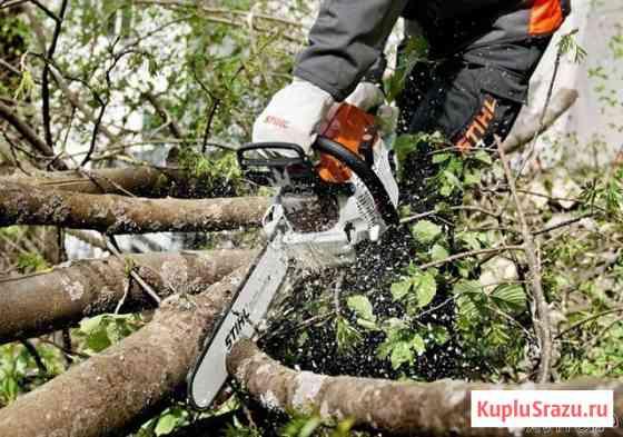 Спилить дерево в Тюмени Тюмень