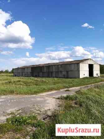 Земля под сельхозпроизводство со строениями продаю Орехово-Зуево