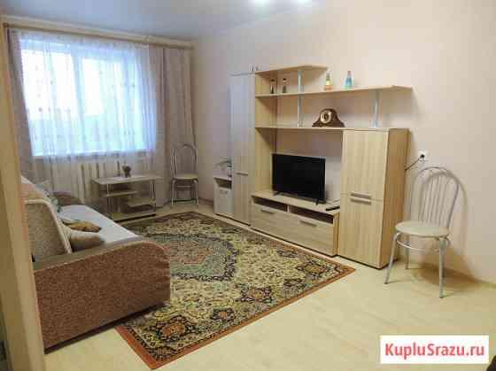 Уютная квартира для кратковременного проживания Владимир