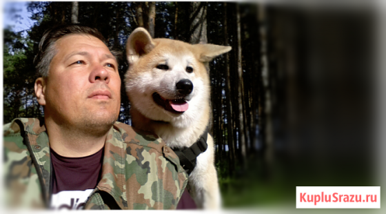 Дрессировка собак Набережные Челны Набережные Челны