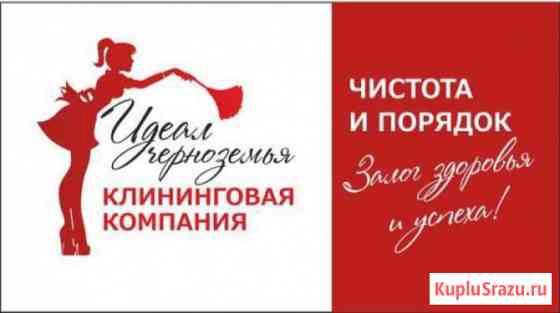 Уборка дома, квартиры и организации. Клининговая компания Идеал Черноз Белгород
