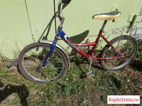 Велосипед Димитровград