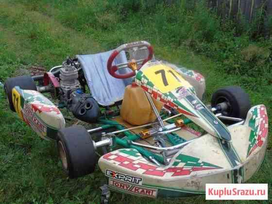 Картинг Tony Kart Свободный