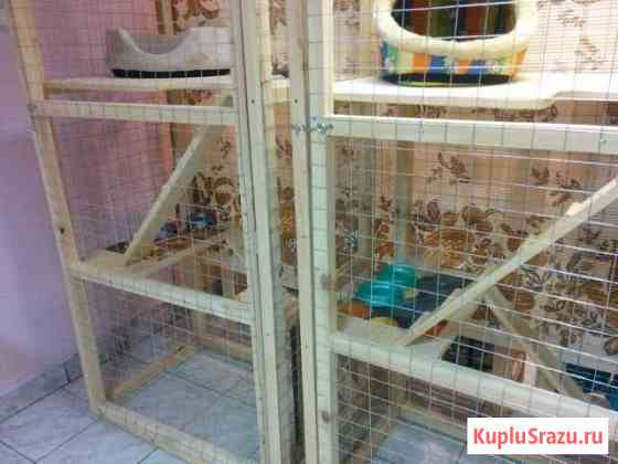 Гостиница для животных Архангельск