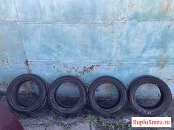 Продам летние шины Dunlop Каа-Хем