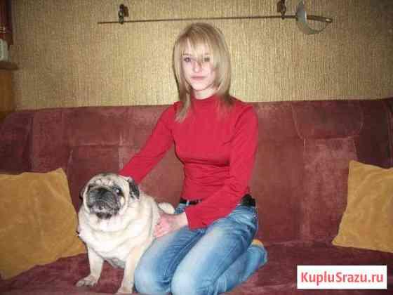 Передержка на дому всех животных и аквариумов Москва