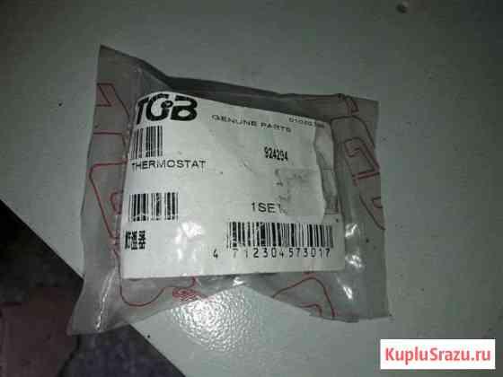 Термостат оригинал для рм-500 (TGB 924294) Рязань
