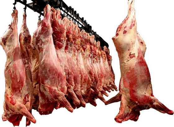 Мясо говядины, баранины и свинины Нижний Новгород