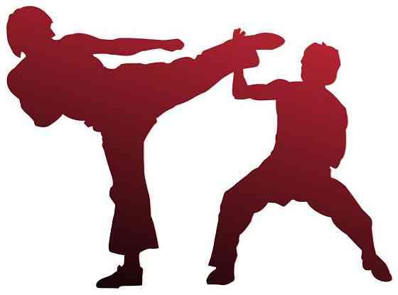 Детский домашний тренер по каратэ Kyokushinkai в Измайлово Москва