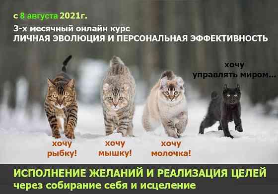 3-х месячный трансформационный онлайн-курс Личной Эволюции и Персональной Эффективности Екатеринбург
